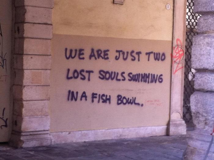 We are just two lost souls swimming in a fish bowl...